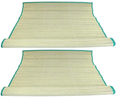 POWGYM Pack of 2 Tropical Woven Straw Beach Mat