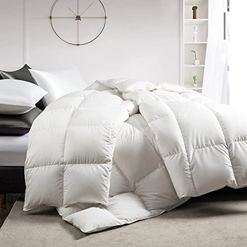 puredown White Down Comforter Year Round Use Extra Soft Cotton Shell All Season Medium Warmth Fluffy Duvet Insert with Tabs, Full/Queen Size, White