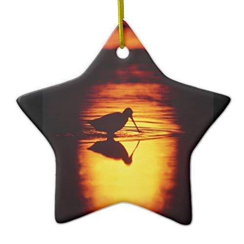GFGKKGJFF - Adornos navideños de cerámica para árbol de Navidad, diseño de Silueta de Estrella de Brigantine NWR