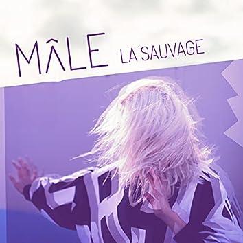 La sauvage (Radio edit)
