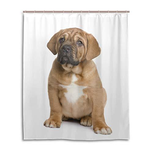 Orediy wasserdichte Duschvorhänge Bordeaux Welpe H& Polyester Badevorhang mit 12 Haken 153 x 183 cm Badezimmer Decor