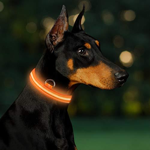 Solawill, collare luminoso a LED per cani, ricaricabile tramite USB, lunghezza regolabile, con 3 modalità di illuminazione, collare di sicurezza per cani di taglia piccola e media