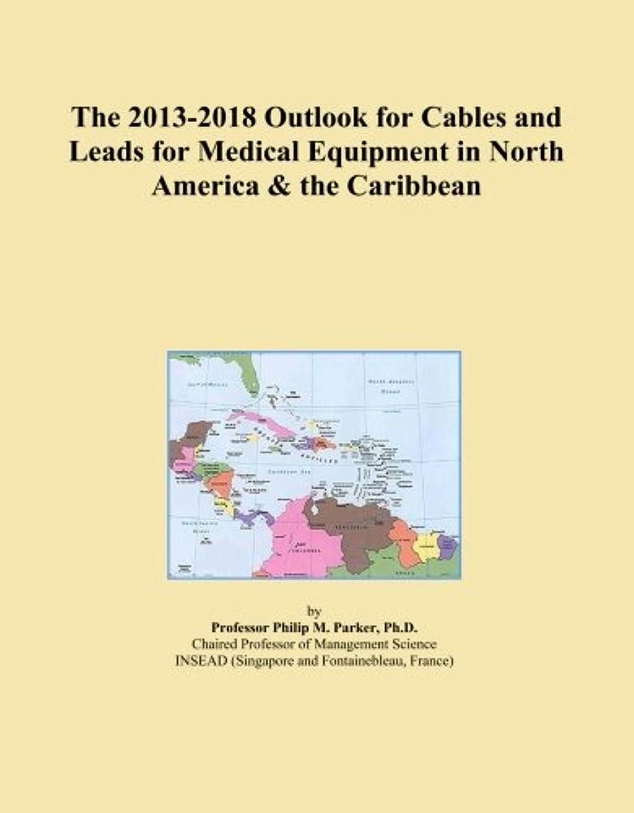 狂った甥失礼なThe 2013-2018 Outlook for Cables and Leads for Medical Equipment in North America & the Caribbean