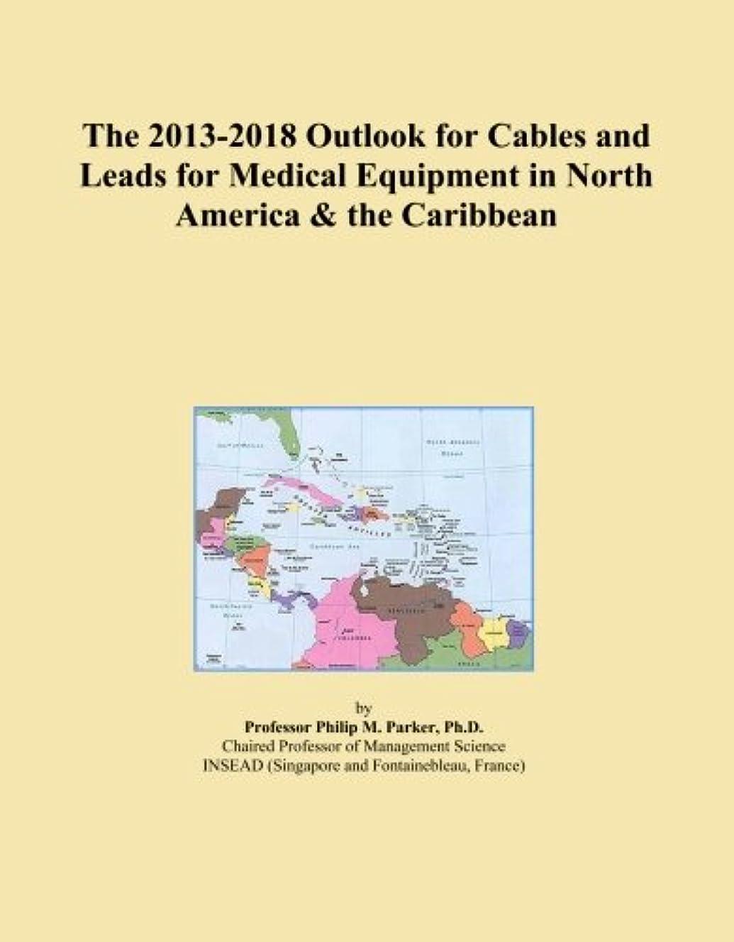 英語の授業があります本当のことを言うとキャンディーThe 2013-2018 Outlook for Cables and Leads for Medical Equipment in North America & the Caribbean