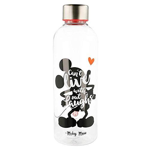 Disney Mickey hydro bottle