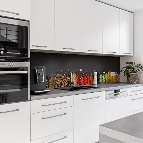Dedeco Küchenrückwand Motiv: Gewürze V1, 3mm Aluminium Platte als Fliesenverkleidung Spritzschutz Küchenwand Verbundplatte wasserfest, inkl. UV-Lack glänzend, alle Untergründe, 220 x 60 cm