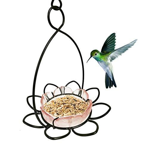Heoolstranger Hanging Bird Feeder - Wild Bird Seed Feeders, ijzeren staan en glazen kom, hangende tuindecoraties