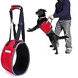 Louvra Tragehilfe für Hunde Hilfsgeschirr Nylon Verstellbar Tragegurt für Alte Behinderte Hunde Unterstützung beim Laufen Treppensteigen Rehabilitation Assist (Schwarz/Rot)