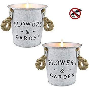 2-Pack Y Yuegang Citronella Aromatherapy Scented Candles