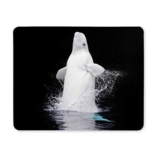 Durchbrechen des gefangenen Beluga-Wals im Vancouver Aquarium Rechteck Computer Mouse Pad Gaming Mousepad Mat