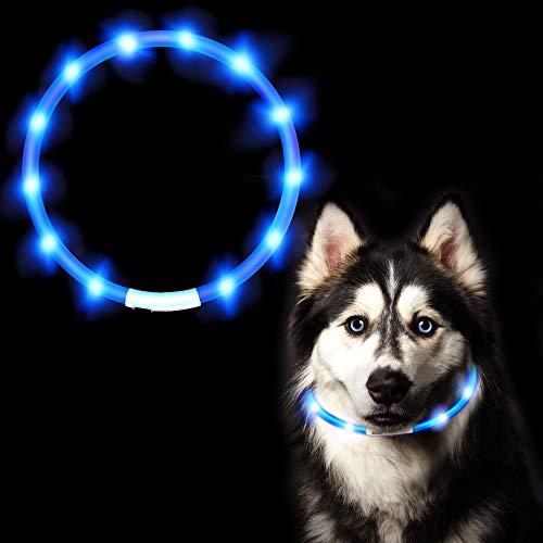 ASANMU LED Hundehalsband Leuchtend, LED Halsband für Hunde Leuchtendes Halsbänder USB Wiederaufladbar Hundeband Nacht Blinkende Sicherheit Halsband Hunde Hundespielzeug für Hunde Welpe Katzen (Blau)