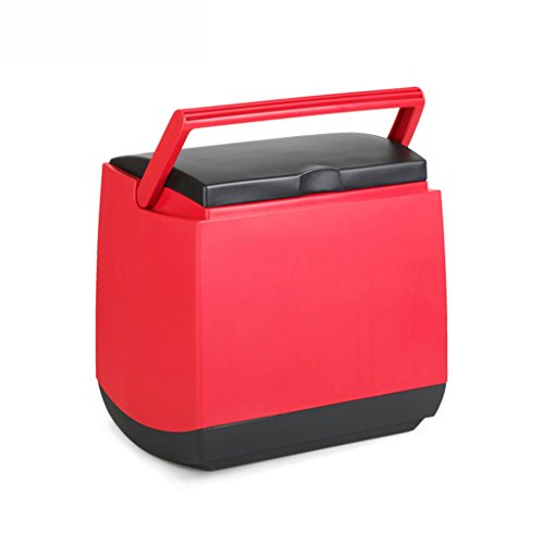 JCOCO Frigorifero domestico dell'automobile 24V Dormitorio dedicato Piccolo refrigeratore domestico di Mini due mini mondo