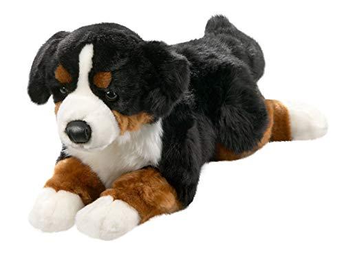 Carl Dick Berner Sennenhund aus Plüsch, ca. 40cm 1542001