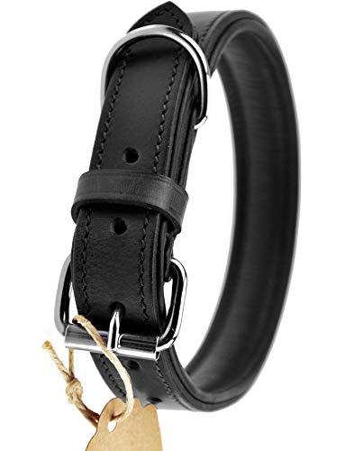 Schnüffelfreunde Lederhalsband Hund (M - 28-36cm, Schwarz)