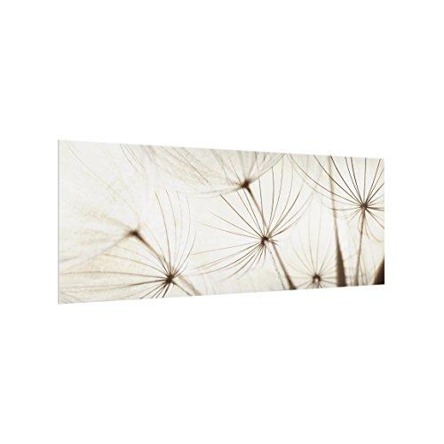 Bilderwelten Panel antisalpicaduras de Cristal - Gentle Grasses - Panorámico, Panel antisalpicaduras...