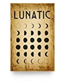 guyfam Lunatic Moon Decor Poster