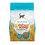 sWheat Scoop Natural Fast-Clumping Wheat Cat Litter