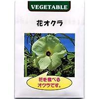 花オクラ(トロロアオイ)の種 2袋セット[ハナオクラ 粘り気のある花を食べる野菜 4~5月まき][野菜タネ]