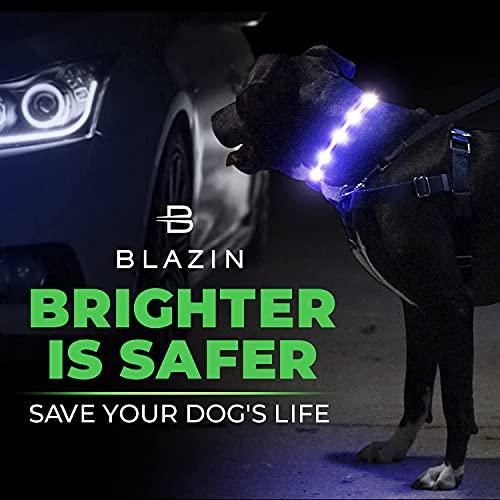Product Image 6: Blazin' Safety LED Dog Collar