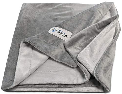 PetFusion Premium Pet Blanket, Multiple Sizes for Dogs & Cats. [Reversible Micro Plush]. 100% Soft Polyester, Gray, Medium (44 x 34) (PF-PB2A)
