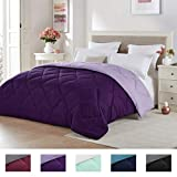 Seward Park Solid, Reversible Color Microfiber Comforter, Hypoallergenic Plush Microfiber Fill, Duvet Insert or Stand-Alone Comforter, Spring/Summer Comforter Lightweight, Full/Queen, Plum/Purple