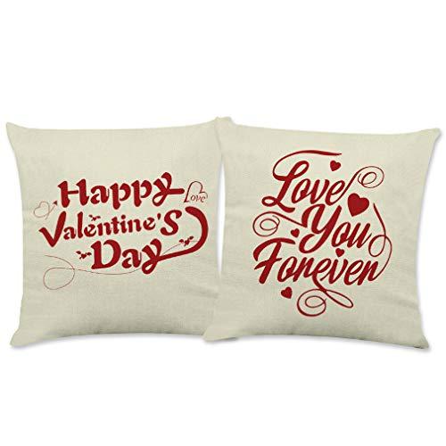 Juego de 2 fundas de almohada para el día de San Valentín con cierre decorativo para sofá, coche, dormitorios y sofás