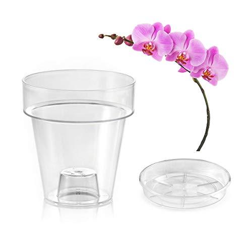 Teraplast Vaso Trasparente Porto Con Supporto Per Orchidee, Con 4 Fori Di Drenaggio - Completo Di Sottovaso (Ø 14 Cm, Vaso Forato + Sottovaso)