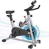 BARWING Exercise Bikes Stationary- Indoor Cycling Bikes Fully Adjustable Spin Bikes for home Gray