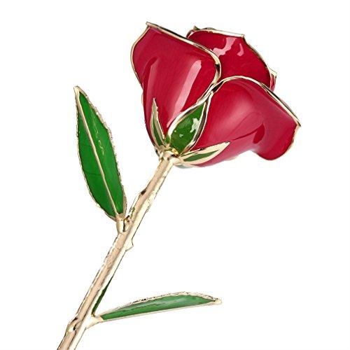YKS Rosa Bañada en Oro de 24 K, mejor regalo para Día de San Valentin (Rojo)