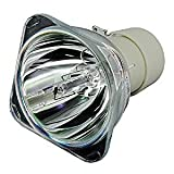 EU-ELE BL-FU240A - Bombilla de repuesto compatible con lámpara SP.8RU01GC01 para proyector OPTOMA DH1011/EH300/HD131X/HD25/HD25-LV/HD2500/HD30/HD30B