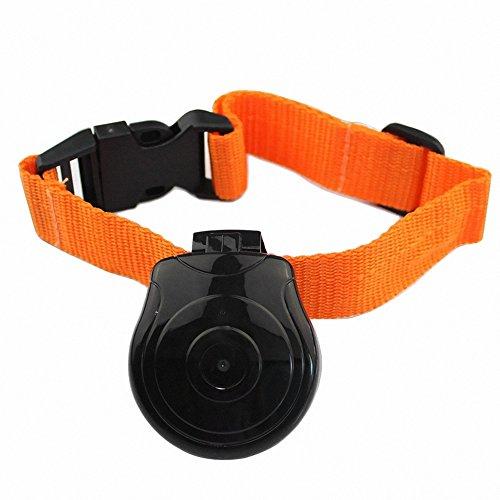 Weatherproof Rechargeable Pet Camera w/ Digital LCD, Mic & Built-in 128Mb Internal Memory (Black)