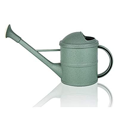 Fusolo 1.6L Watering Can Watering Kettle Small Watering Pot for Indoor & Outdoor Watering Plants and Potted Flowers (1.6L, Light Green)