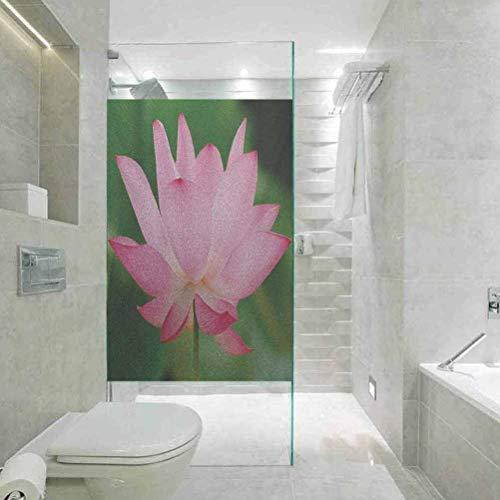3D No Glue Statische Dekoration Fensterfolie Glas Aufkleber Pink Blume Thema Natur inspiriert Schöne Lotus Lily Blossom Ro, Home Fenster Tönungsfolie Hitzeregulierung 60 x 40 Zoll