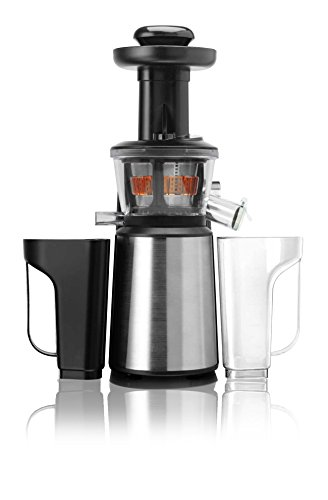 RGV Juice Art New Estrattore, 400 W, 1 Decibel, Acciaio Inossidabile, Argento