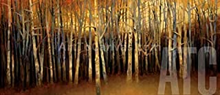 ArtToCanvas 38W x 17H inches : October Treescape by Robert Striffolino - Framed Canvas