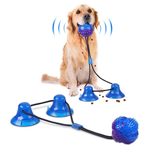 Double Suction Cup Rope Puzzle T...