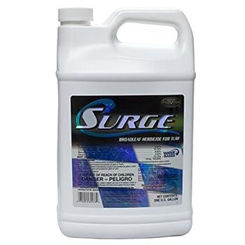 Best surge herbicide Reviews