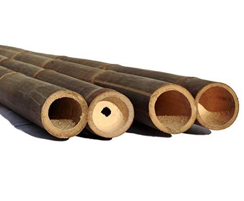 1 Stück Wulung Bambusrohr schwarz braun 200cm mit Durch. 6-8cm, behandelt mit Borsalz von Bambus-Discount - Bambus Rohr
