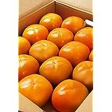 もりもとや 柿 和歌山県産 たねなし柿 4キロ 14個~24個