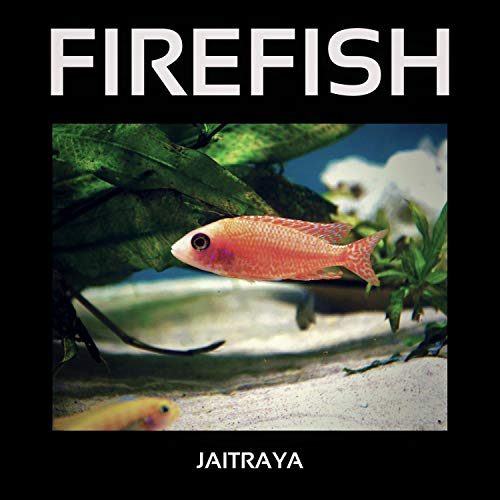 Firefish (Club Mix)