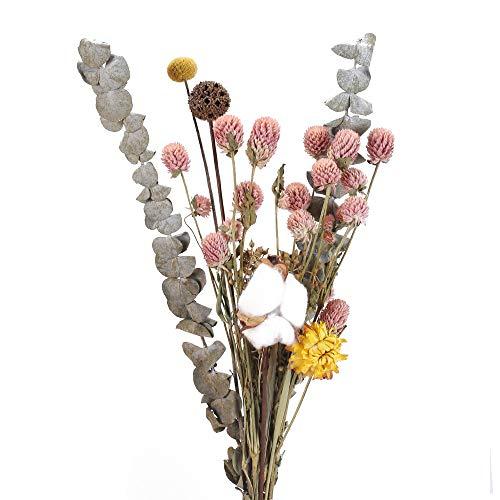 NAHUAA Natürliche Trockenblume Deko