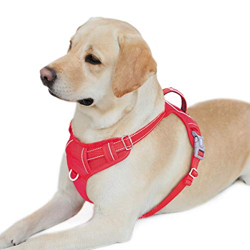 BARKBAY No Pull Dog Harness Front Clip Heavy Duty Reflective Easy Control Handle for Large Dog Walking with ID tag Pocket(Red,L)