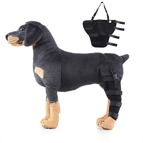 hanbby Hunde Arthrose Kniebandage Hund Unterstützung für das Hinterbein des Hundes Gemeinsame Unterstützung für Hunde Hundebeinverband Black,Left-Leg-l