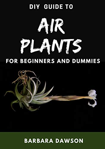 DIY Guide To Air Plants For Beginners and Dummies (English Edition)