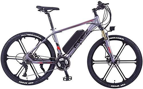 Bicicleta eléctrica de nieve, 26 pulgadas bicicleta eléctrica de montaña bicicleta eléctrica 350W Ebike bicicleta eléctrica, a 30 km / h adultos ebike con batería extraíble, apto for todo terreno Bate