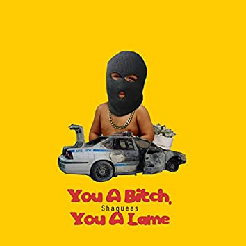You a Bitch, You a Lame
