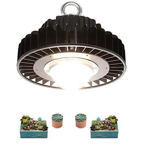 ZJING LED Grow Light Full Spectrum 100W 3500K LUMENS CXM32 LED Plant Grow Lamp Forindoor Tent Greenhouses Hydroponic Plant,220V