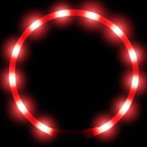 Joytale Collar Luminoso Perro, Collar para Mascotas LED Ajustables con Luz, Collares Recargable USB para Perros Pequeños, Medianos y Grandes, Rojo