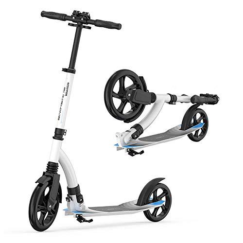 JZX Patineta Scooter-Scooter plegable para niños Patada plegable para adultos, Rueda intermitente...