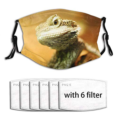Face Cover Animal Bearded Dragon Mask Print Design Balaclava Bandanas Reusable Windproof Anti-Dust Adjustable Earloops Headwear Outdoor Motorcycle Running Dust Cover with 6 Filters for Teen Men Women